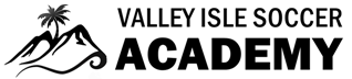 VALLEY ISLE SOCCER ACADEMY